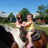 Little girl on a big horse!