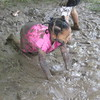 Crawling in the mud!